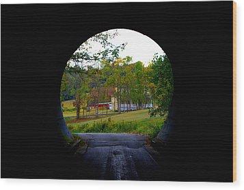 Framed By A Tunnel Wood Print by Cathy Shiflett
