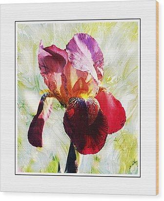 Framed Iris Wood Print