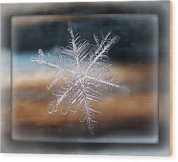 Framed Snowflake Wood Print