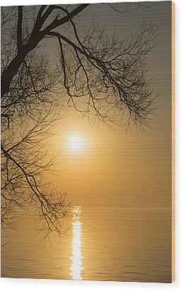 Framing The Golden Sun Wood Print by Georgia Mizuleva
