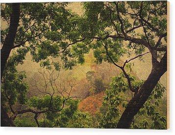 Framing Tree Branches Wood Print by Jenny Rainbow