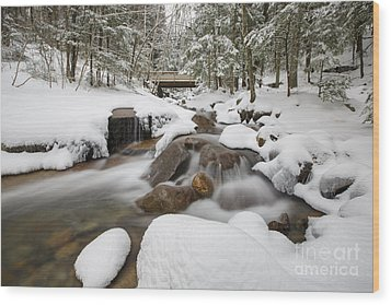 Franconia Notch State Park - White Mountains New Hampshire Usa - Flume Gorge Wood Print by Erin Paul Donovan