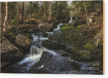 Wood Print featuring the photograph Franey Falls by Nancy Dempsey