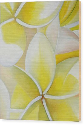 Frangipani Wood Print by Amir