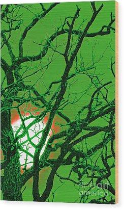 Frankenstein Moon Wood Print by First Star Art