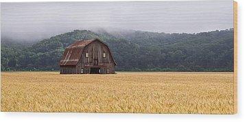 Wood Print featuring the photograph Frechman Barn - Summer by Wayne Meyer