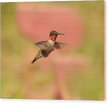 Free As A Bird Wood Print by Lori Tambakis