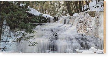 Freedom Falls Winter Wood Print by Anthony Thomas