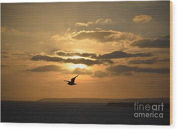 Freedom Wood Print by OUAP Photography
