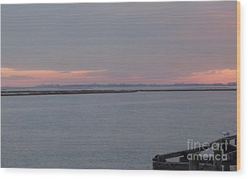 Freeport Winter Sunset At The Nautical Mile Wood Print by John Telfer