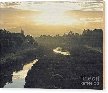 Wood Print featuring the photograph Fremont Dawn by Ellen Cotton