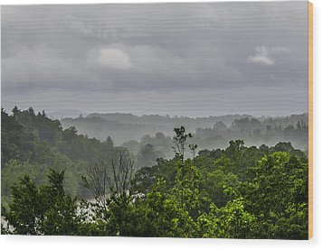 French Broad River Wood Print by Carolyn Marshall