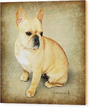 Wood Print featuring the photograph French Bulldog Antique by Barbara Chichester