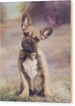 French Bulldog Wood Print by Cindy Grundsten