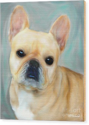 French Bulldog Mystique D'or Wood Print by Barbara Chichester