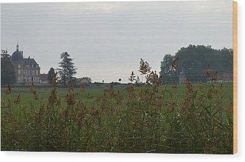 French Chateau Wood Print
