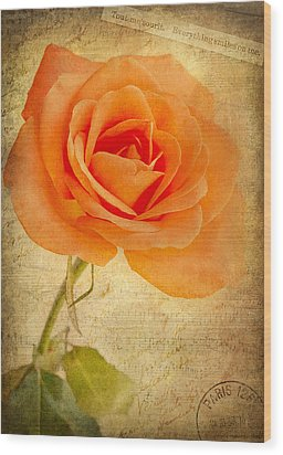French Rose Wood Print by Kim Andelkovic