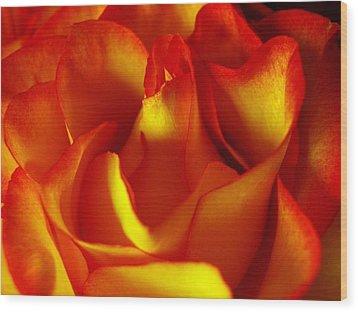 Fresh Bloom Wood Print by Tom Druin