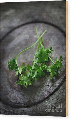 Fresh Celery Wood Print by Mythja  Photography