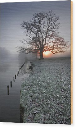 Fresh New Morning  Wood Print by John Chivers