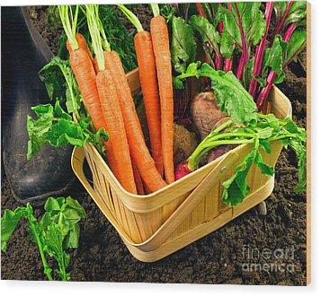 Fresh Picked Healthy Garden Vegetables Wood Print by Edward Fielding