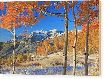 Fresh Snow In The Aspens. Wood Print