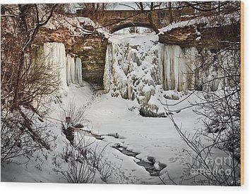 Fresh Snowfall At Wequiock Falls Wood Print