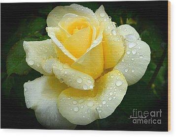 Fresh Sunshine Daydream Rose Wood Print