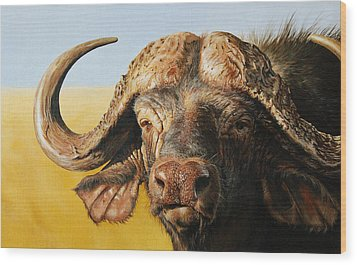 African Buffalo Wood Print by Mario Pichler