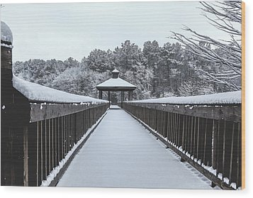 Fridged Pathway Wood Print