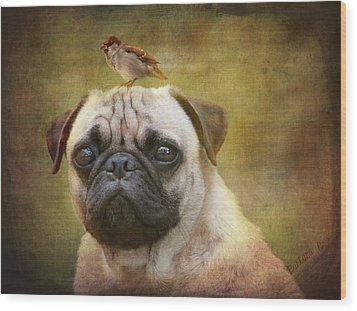 Friends Like Pug And Bird Wood Print by Barbara Orenya