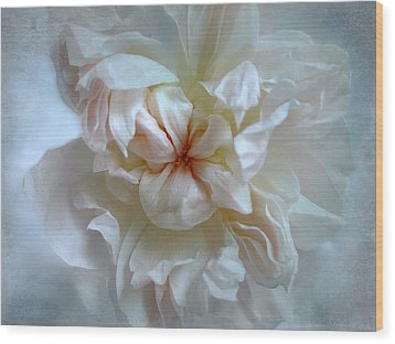 Wood Print featuring the photograph Friendship Is The Breathing Rose by Louise Kumpf