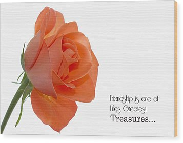 Wood Print featuring the photograph Friendship Treasures by Kim Andelkovic