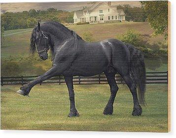 Friesian Stallion Tije Spanish Walk Wood Print by Fran J Scott