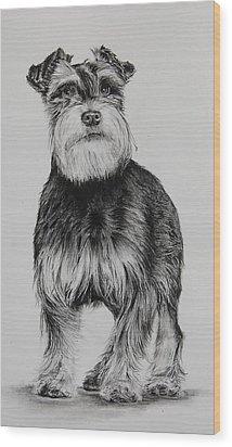 Fritz Wood Print by Jean Cormier