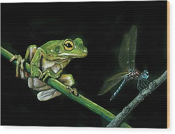 Frog And Dragonfly Wood Print