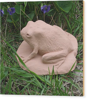 Toad Wood Print by Deborah Dendler