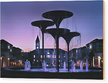 Frog Fountain Pano Wood Print