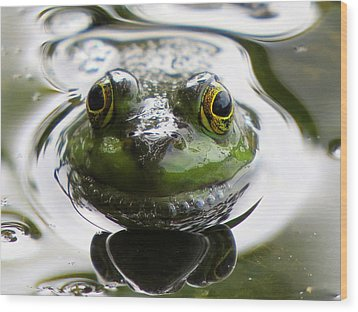Wood Print featuring the photograph Frog Kiss by Dianne Cowen