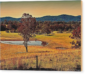 From A Distance Wood Print by Wallaroo Images