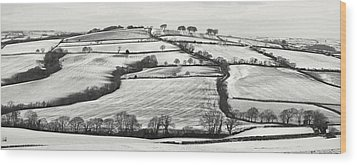From Raddon Top In The Snow Wood Print by Pete Hemington