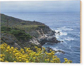From The Cliffs Above Wood Print by Anthony Citro