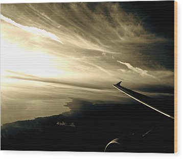 From The Plane Wood Print by Gwyn Newcombe