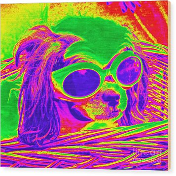 Front Seat Driver Pop Art - Puppy Mania Wood Print by Ella Kaye Dickey