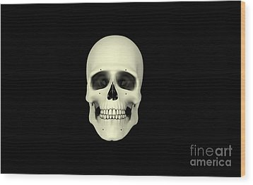 Front View Of Human Skull Wood Print by Stocktrek Images