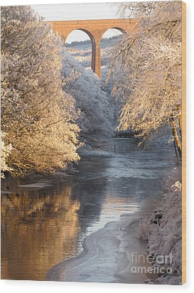 Wood Print featuring the photograph Frost And Ice by Jacqi Elmslie