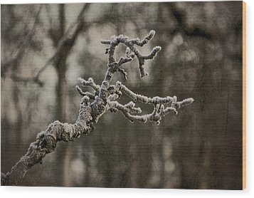 Frost Dragon Wood Print by Odd Jeppesen