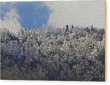 Frost Line 2 Wood Print by Tom Culver