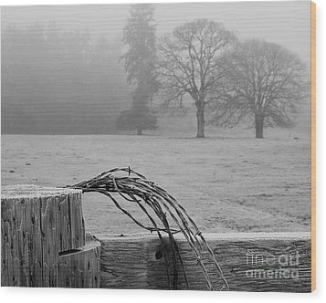 Frost On The Fence Post Wood Print by Chuck Flewelling