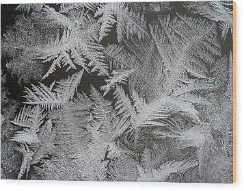 Frost Patterns Wood Print by Carolyn Reinhart